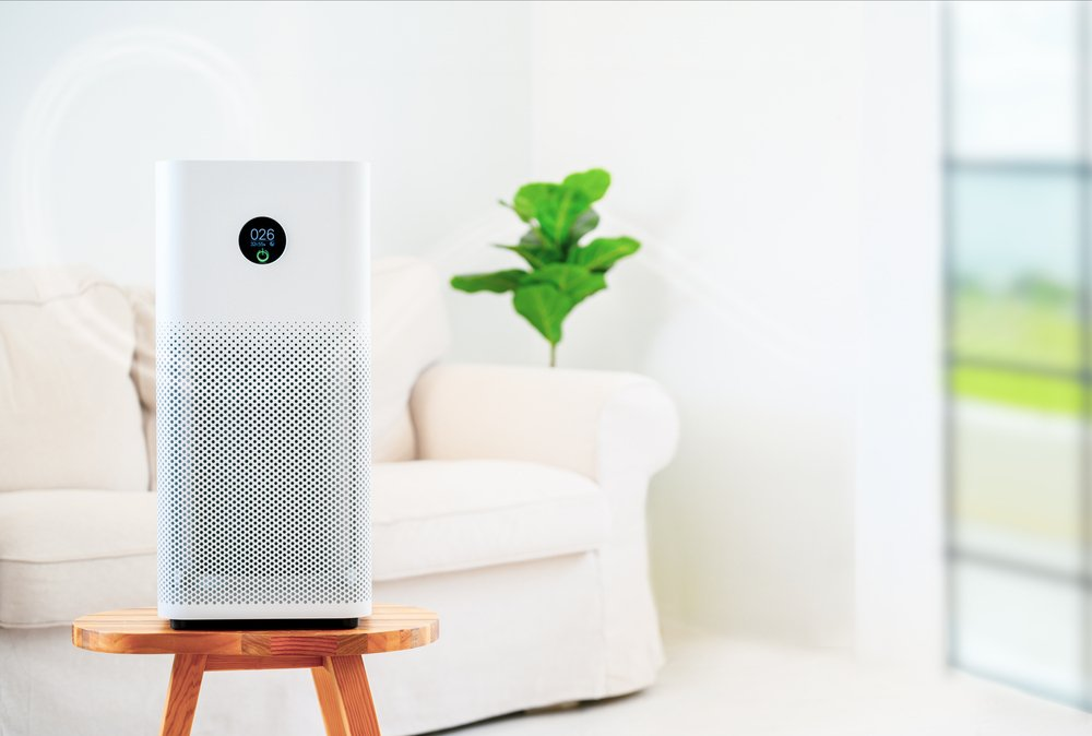 Best Air Purifier for Weed Smoke